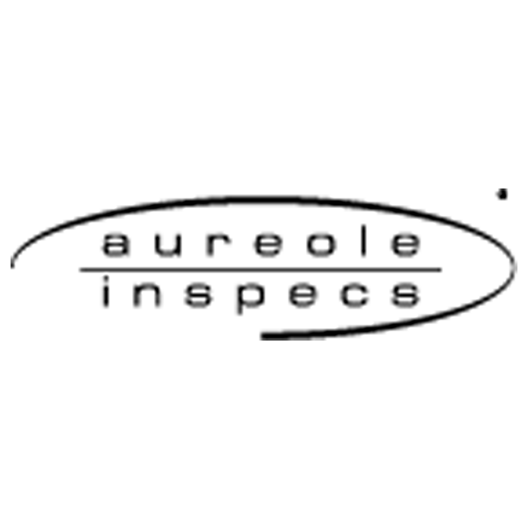 Austin Reed Aureole Inspecs